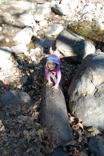Miss N crossing the creek