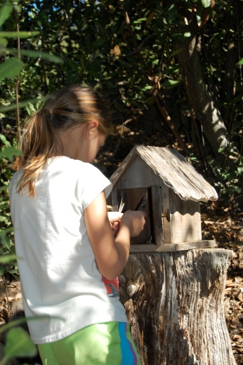 Miss K caring for the Fairies