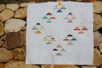 Scrappy Flocks Quilt Top #2